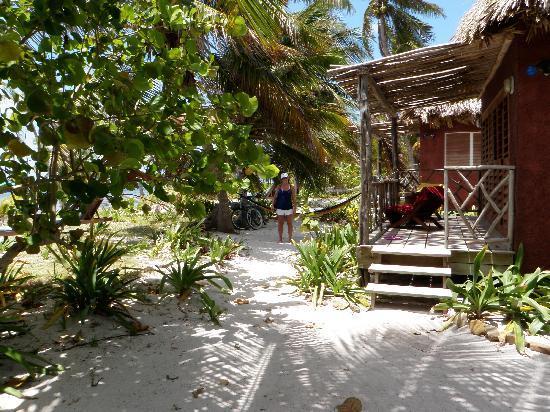 Ak'bol Yoga Retreat & Eco-Resort: walk from Cabana to Seaside Beach bar