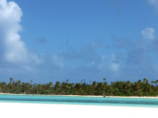 Bishops Cruises: On our tour - wonderful fresh snacks, coconuts straight from the beach! Lovely lunch included -