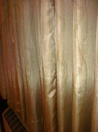 Cedar Park Inn And Suites: seriously water stained curtains