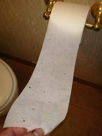 Cedar Park Inn And Suites: I'm not even this cheap w/T.P; those are actual holes.