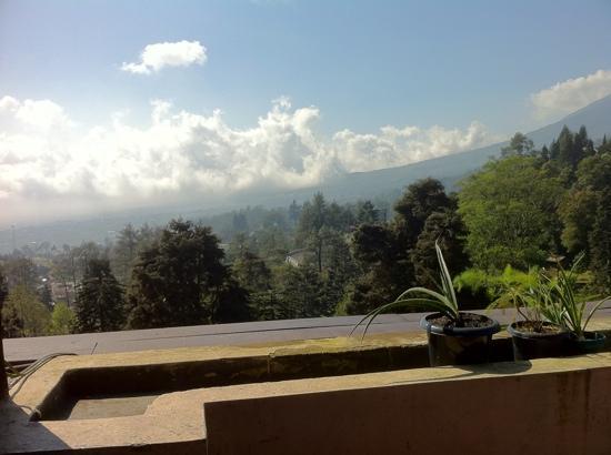 Puncak Pass Resort: view from hotel restaurant