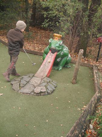 Center Parcs Erperheide : golf
