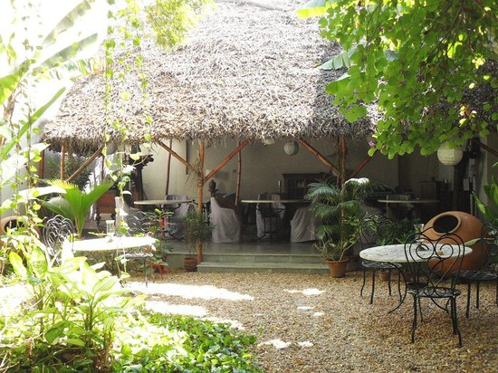 Villa Helena: le jardi