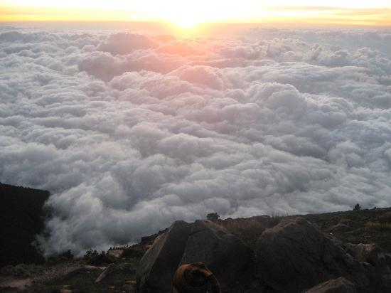 Posada Los Bucaros: ascension volcan conseillée