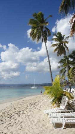 Bacardi Insel Dom Rep Karte.Strandfoto Bacardi Insel Einfach Nur Schön Bild Von Hotel