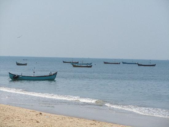 juSTa Turtlebay On Sea, Kundapur Resort : Fishing boats