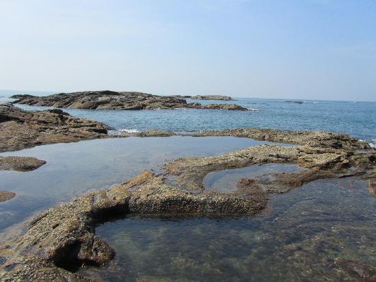 juSTa Turtlebay On Sea, Kundapur Resort : Island