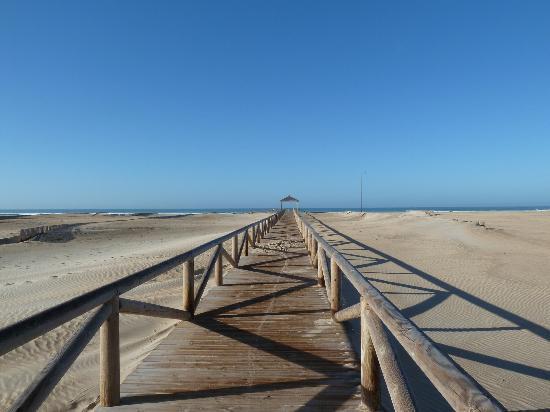 Conil de la Frontera, Spanje: Strand