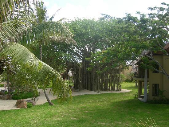 Trou aux Biches Beachcomber Golf Resort & Spa: jardin