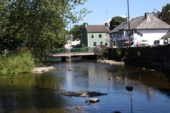 Ryan's River Lodge : River View