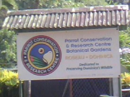 Dominica Botanic Gardens: could view the parrots of dominica  only on domininca