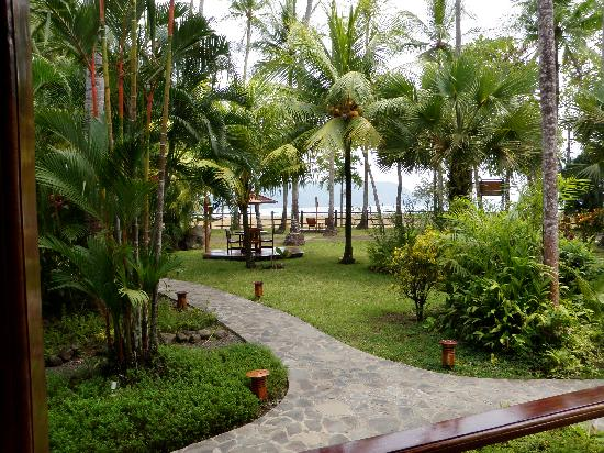 Tambor Tropical Beach Resort: Tropical landscaping