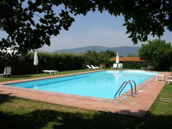 Case Sant'Anna: La piscine. Au fond, sur la colline, la ville d'art de Cortona