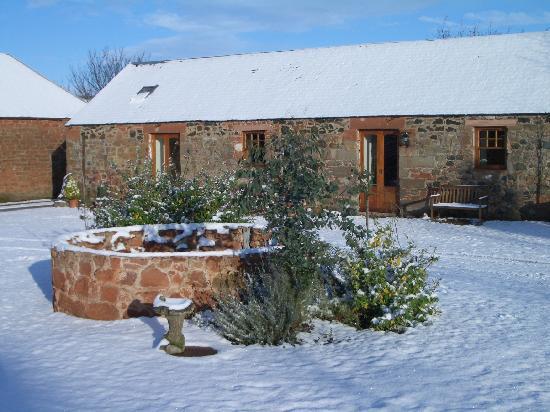 The Courtyard: winter scene of bull pen