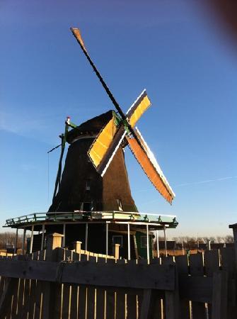Amsterdam, The Netherlands: saans wind farm. k ramamurthy