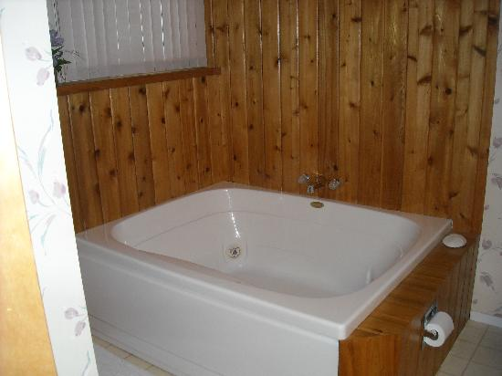 Trout Creek Condominiums - Vacation Rentals: Jacuzzi in master bathroom