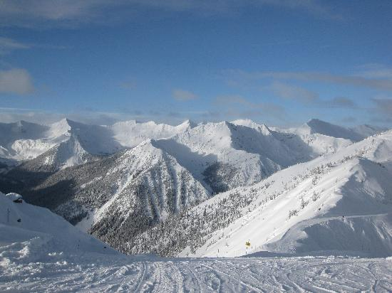 Dreamcatcher Hostel: View from Kicking Horse ski station