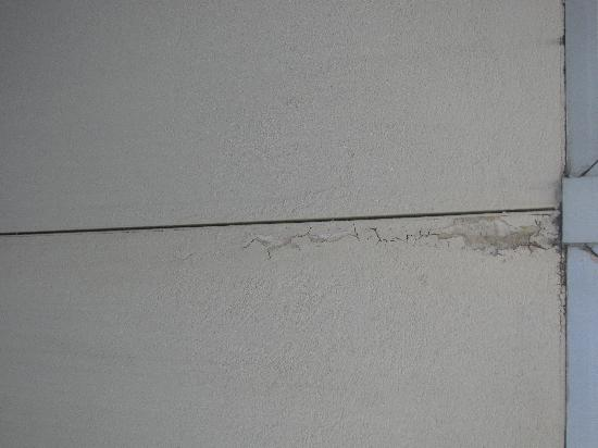 بلاك هورس لودج آند سويتس: walls