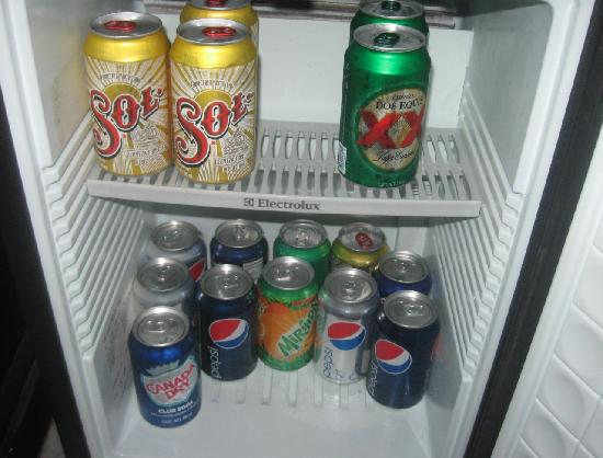 Sandos Playacar Beach Resort: contents of mini fridge