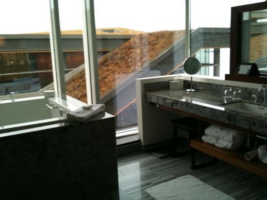 Fairmont Pacific Rim: cool bathroom