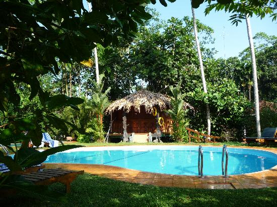 Dalmanuta Gardens - Ayurvedic Resort & Restaurant: la piscine