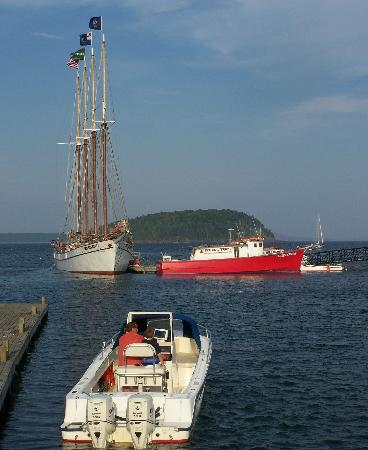 Bar Harbor, ME: Tall masted schooners.
