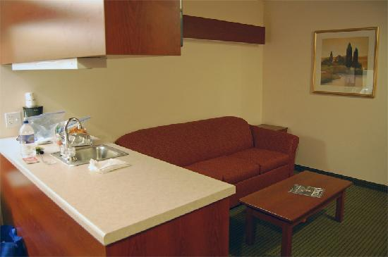 Microtel Inn & Suites by Wyndham Bellevue: Sitting area, complete with sleeper sofa, as seen from the sleeping area.