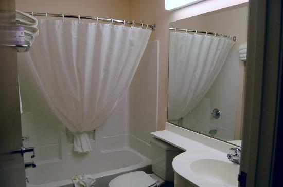 Microtel Inn & Suites by Wyndham Bellevue : Bathroom area.