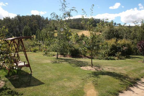 Hamlet Downs Country Accommodation: View from veranda