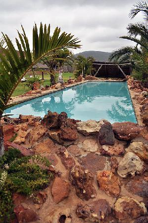 Garden Route Game Lodge: Exotic swimming pool..
