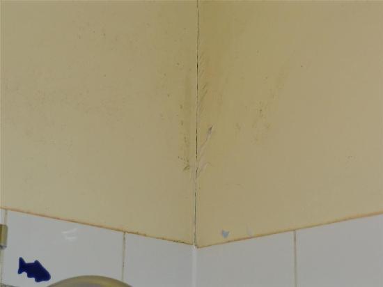 Hotel Bellevue Paris Montmartre: peeling walls