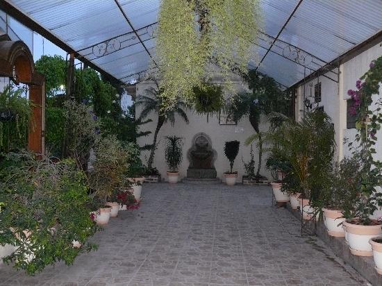Hotel Premier: jardin d'hiver