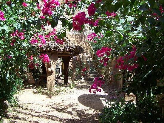 Sanga, Malí: Auberge Grand Castor Dogon