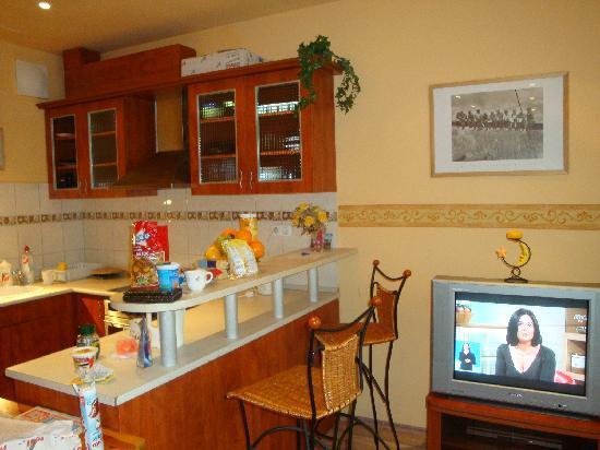 Alfa Apartment Budapest: Kitchen