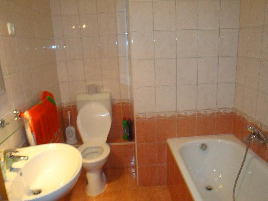 Alfa Apartment Budapest: one of the bathrooms
