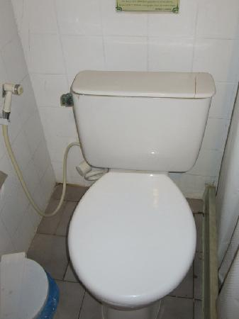 Pousada Saint Germain: Toilet of standard room which needs updating