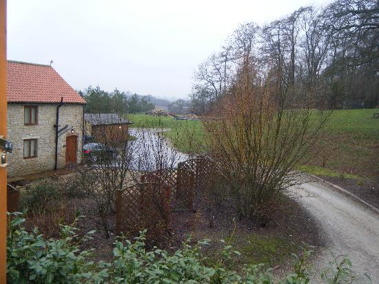 Tantara Woodland Lodges: view from bedroom