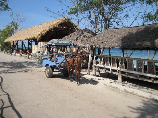 "Manta Dive Gili Air Resort: Die ""Hauptstrasse"""