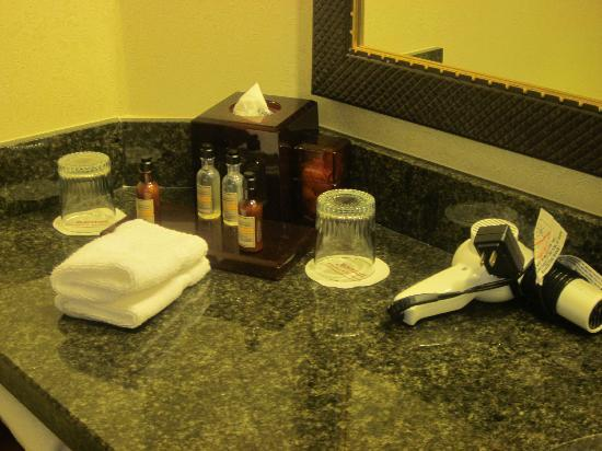 Columbia Marriott: toiletries