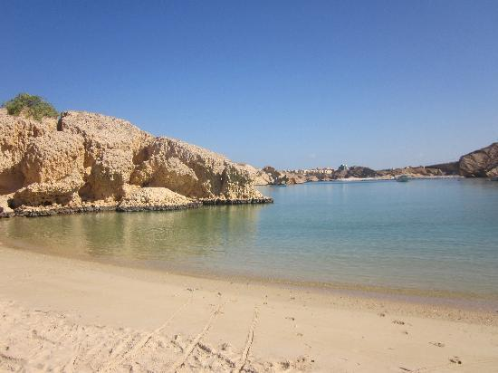 Oman Dive Center Resort: the view