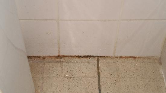 Le Borsat IV: joints des sanitaires.....