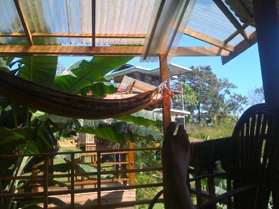 Island Path Panama : View from Cabana...