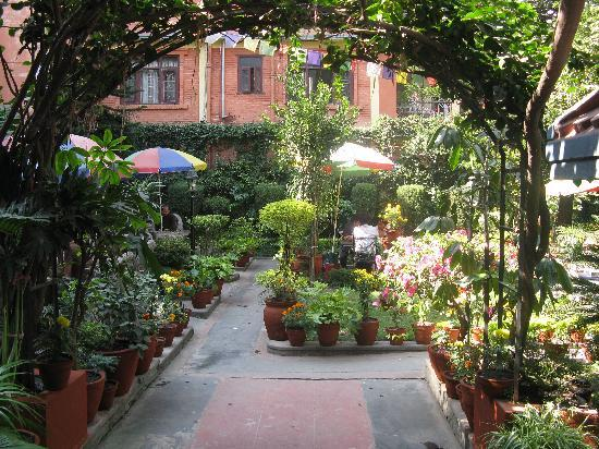 Hotel Ganesh Himal: The beautiful hidden back garden
