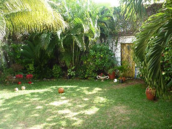 Hostel Quetzal: Garden