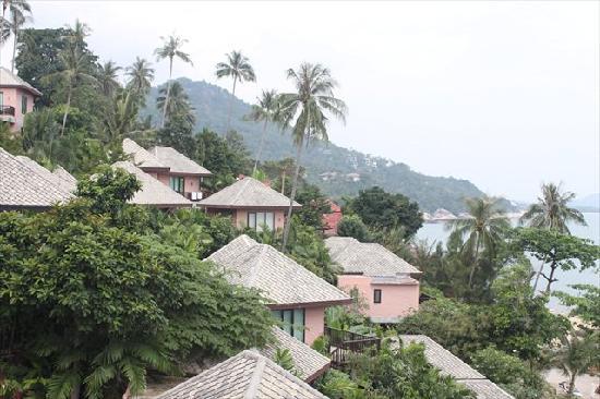 Merit Wellness & Mind Retreat Resort Samui: Beautiful View