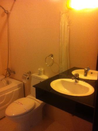 Silverland Inn Hotel: バスルーム