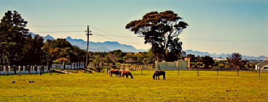 Inn Victori: we're in the country side