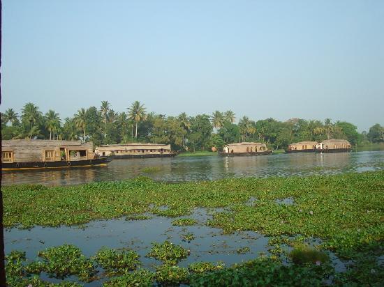 Green Palace Kerala Resort: house boats view from Balcony