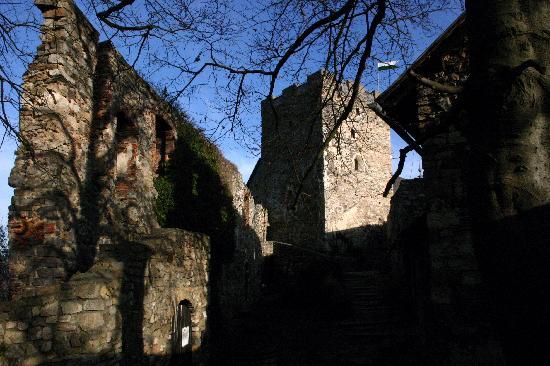 Burgruine Gösting : Die Burganlage