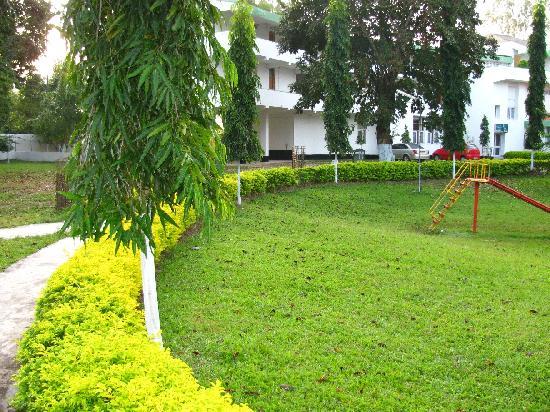 Aranya Lodge: aranya lawn view 1